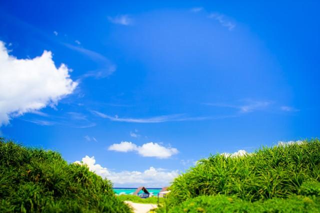 2020年沖縄でお正月を過ごすためのガイド