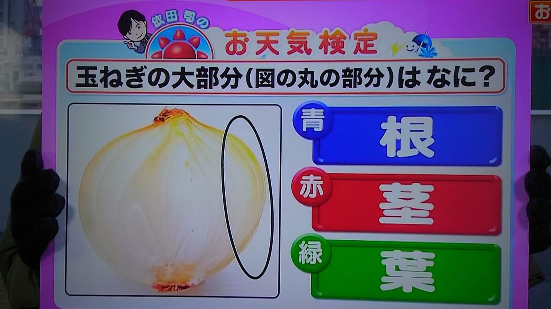 お天気検定,依田司,玉ねぎの大部分(図の丸の部分)は葉っぱ
