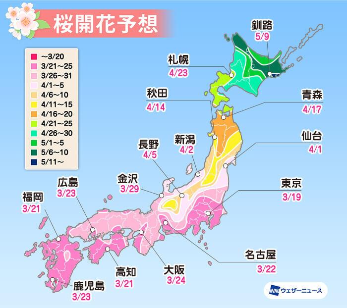 ウェザーニューズ,桜開花予想,ソメイヨシノ
